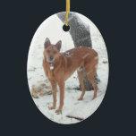 "Christmas Collection Pet or Family Photo Ceramic Ornament<br><div class=""desc"">Christmas Collection Pet or Family Photo Christmas Tree Ornament.</div>"