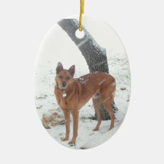 Christmas Collection Pet or Family Photo Double-Sided Oval Ceramic Christmas Ornament