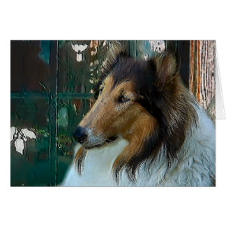 Christmas Collie at Window Card