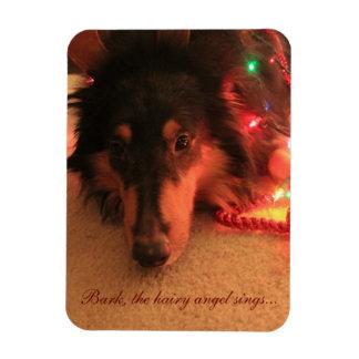 Christmas Collie Magnet, Bark the Hairy Angel