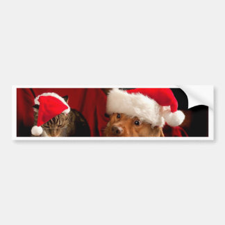 Christmas Cookies and Milk Puppy Bumper Sticker