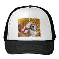 Christmas Corgi Mesh Hat