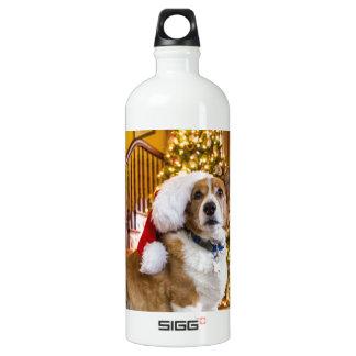 Christmas Corgi Water Bottle