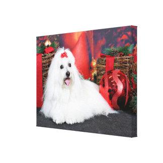 Christmas - Coton de Tulear - Sophie Stretched Canvas Print