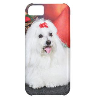 Christmas - Coton de Tulear - Sophie iPhone 5C Cases