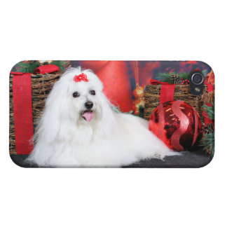Christmas - Coton de Tulear - Sophie Covers For iPhone 4