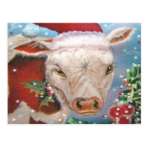 Christmas Cow Design Postcard