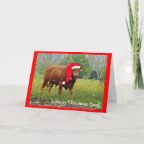 Christmas Cow Greeting Card