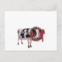 Christmas Cow Postcard Template