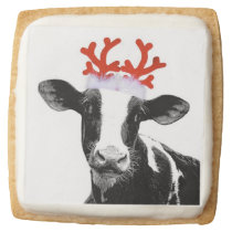 Christmas Cow with Reindeer Antlers Square Shortbread Cookie
