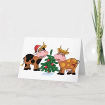 Christmas Cows Holiday Card
