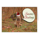 Christmas Coyote Greeting Card