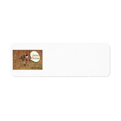 Christmas Coyote Custom Return Address Label