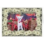 Christmas - Crestie Mojo - Yorkie Millie Cards