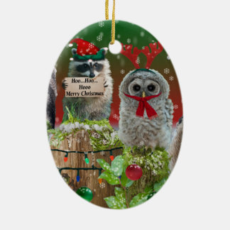 Christmas Critters Owls and Raccoon Christmas Ornaments
