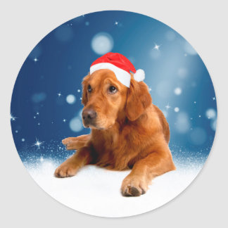Christmas Cute Golden Retriever Dog Santa Hat Snow Classic Round Sticker