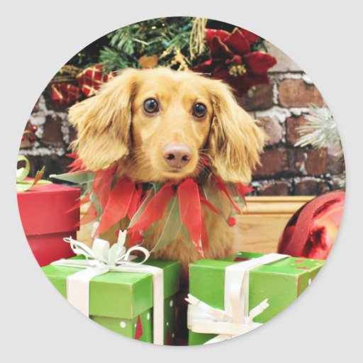 Christmas - Dachshund - Bo Classic Round Sticker