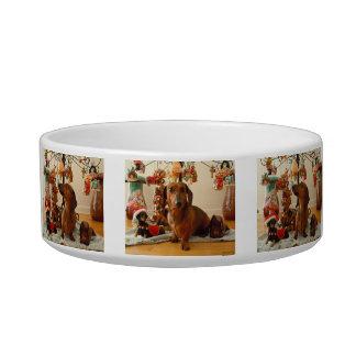 Christmas Dachshund Bowl