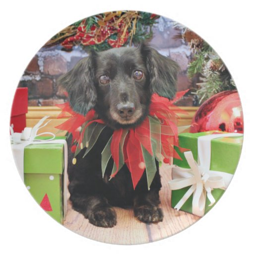 Christmas - Dachshund - Lily Party Plates