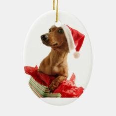 Christmas Dachshund Ornament at Zazzle