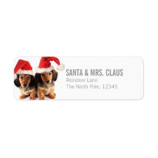 Christmas Dachshund Puppies Wearing Santa Hats Label