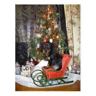 Christmas Dachshund Style Postcard
