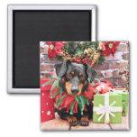 Christmas - Dachshund - Tanner Fridge Magnet