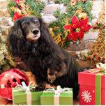 Christmas - Dachshund - Zoey Photo Cutout