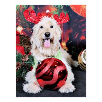 Christmas - Daisy - Goldendoodle Postcard