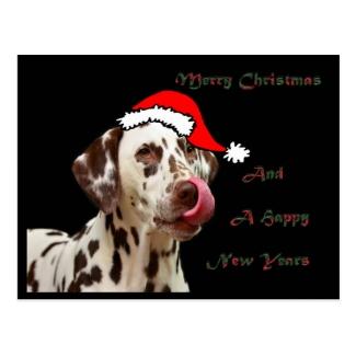 Christmas Dalmatian Postcard