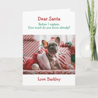 Christmas Dear Santa Before I Explain Holiday Card