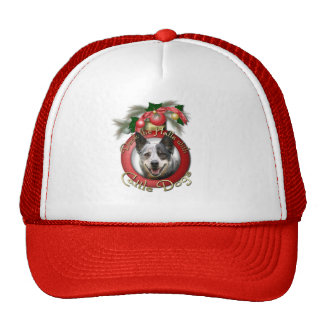 Christmas - Deck the Halls - Cattle Dogs Hats