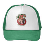 Christmas - Deck the Halls - Labradors - Chocolate Trucker Hat