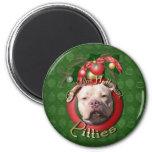Christmas - Deck the Halls - Pitties - Jersey Girl Refrigerator Magnet