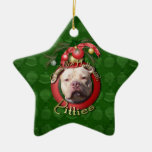 Christmas - Deck the Halls - Pitties - Jersey Girl Double-Sided Star Ceramic Christmas Ornament