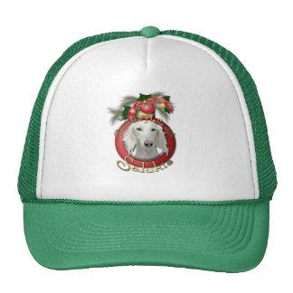 Christmas - Deck the Halls - Salukis Trucker Hat