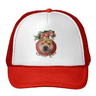 Christmas - Deck the Halls - Shar Peis Hat