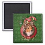 Christmas - Deck the Halls - Shelties - Cooper Magnets