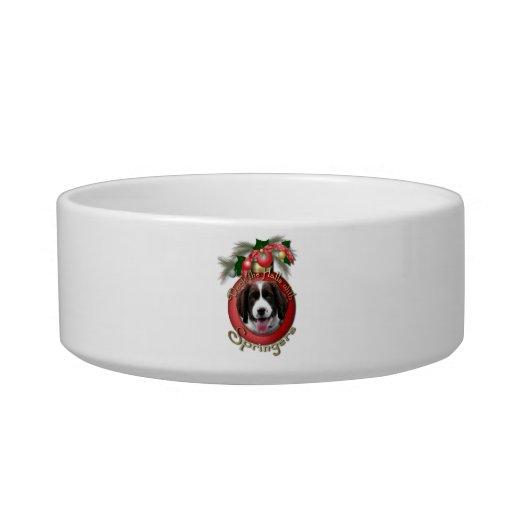 Christmas - Deck the Halls - Springers Cat Bowls