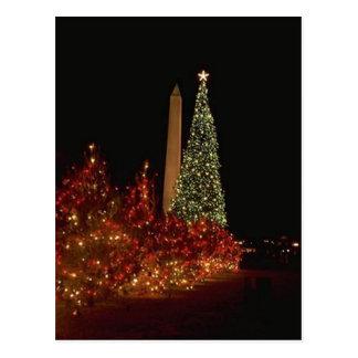 Christmas decorations on the Washington DC  Mall Post Card