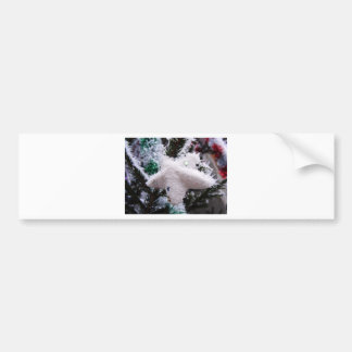Christmas Decorations Star Frosted Bumper Stickers