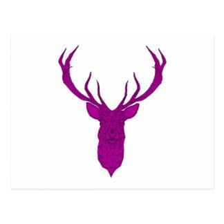 Christmas deer head, antler, stag postcard