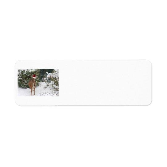 Christmas Deer Label
