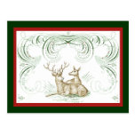 Christmas Deer Post Card