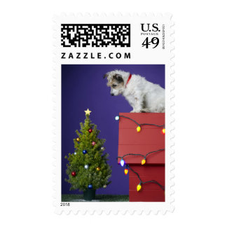 Christmas Dog 2012 Postage