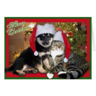 Christmas Dog & Cat Greeting Card