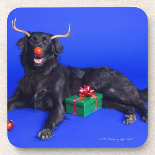 Christmas dog drink coaster