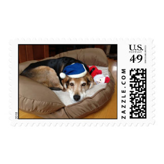 Christmas Dog in Bed Postage Stamp