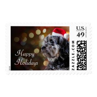 Christmas Dog Waiting For Santa Postage