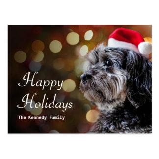 Christmas Dog Waiting For Santa Postcard